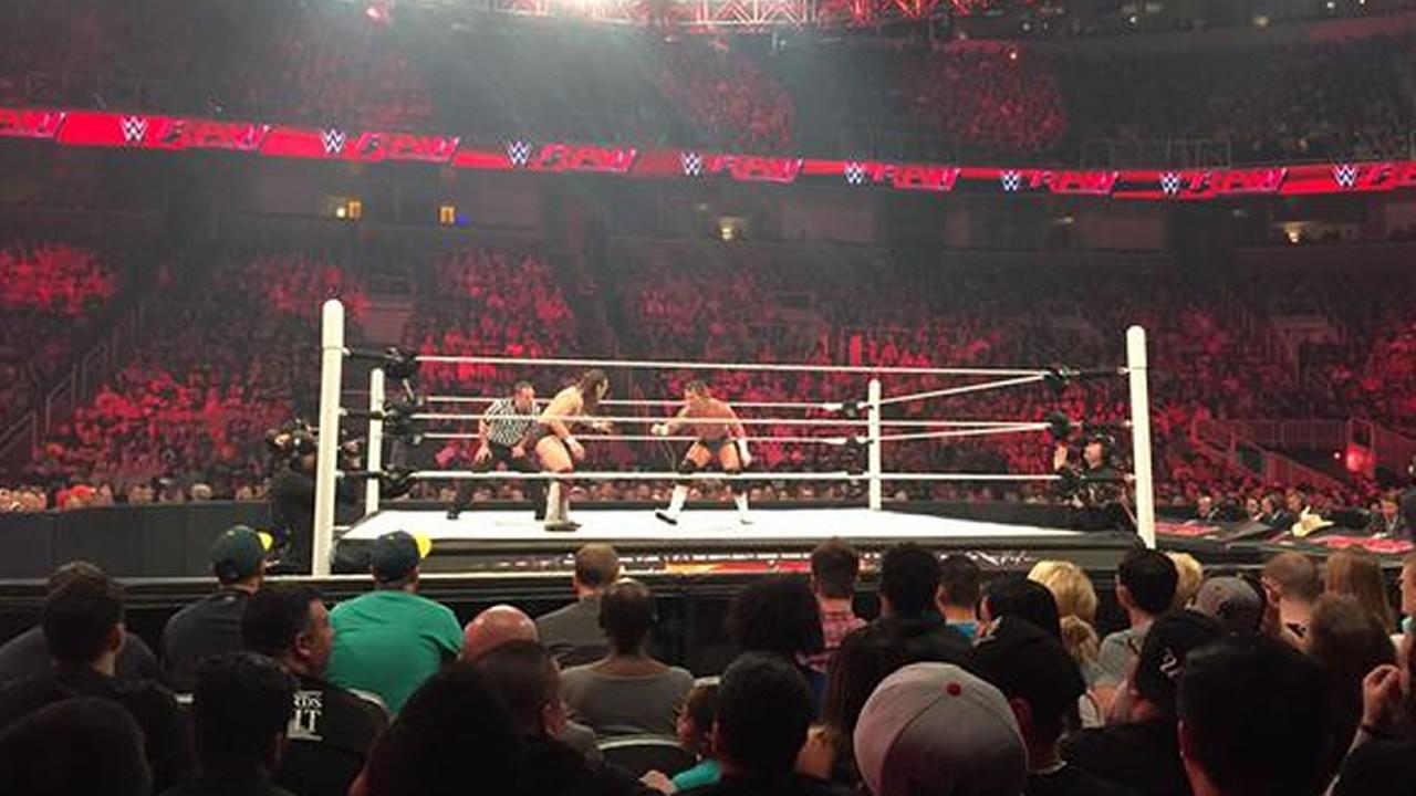 wrestlets in ring