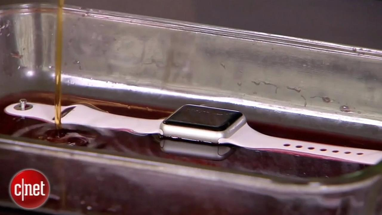 CNET Senior Editor Sharon Profis put the Apple Watch poured red wine over the device to test its durability.