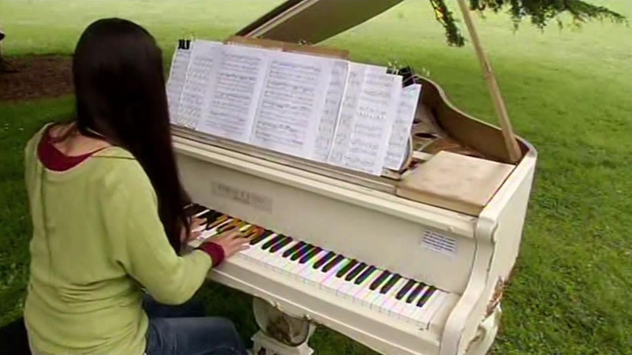 A woman plays a newly installed piano at San Francisco Botanical Garden July 9, 2015 which is part of a project to celebrate the gardens 75th anniversary.