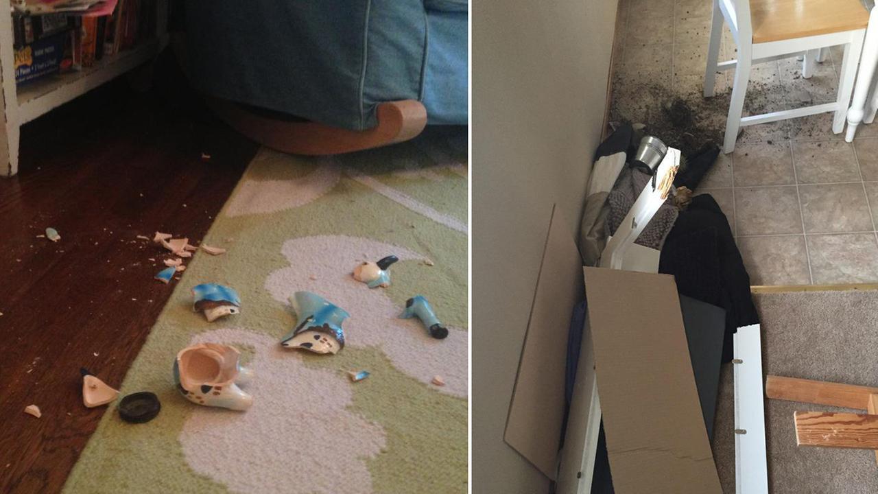 (Left) Broken ceramic goat from Greece via Maddie Malan/Twitter and (right) broken shelf via Brittany OBrien/Twitter