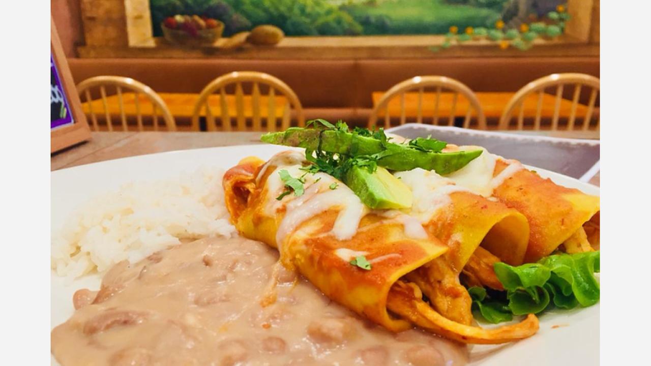 Chicken enchiladas. | Photo: Mayas Restaurant Cafe/Yelp