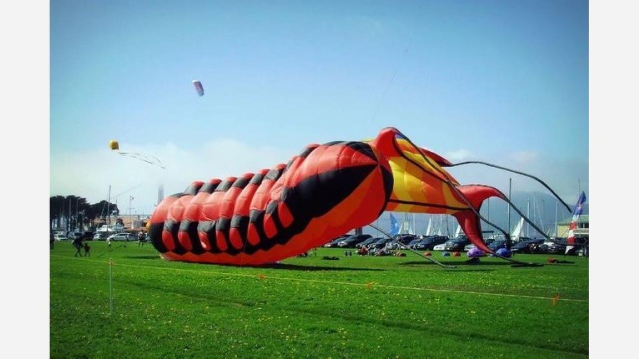 A mega caterpillar kite at the annual Presidio Kite Festival. | Photo: solyanka/Flickr