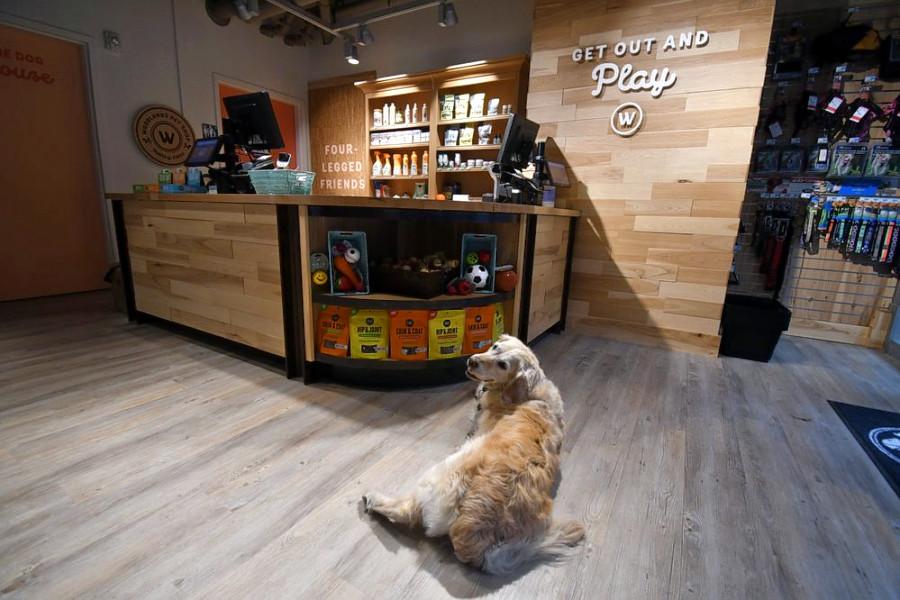 Photo: Woodlands Pet Shop/Yelp