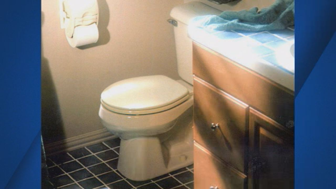 This undated image shows a toilet inside a home in the U.S.