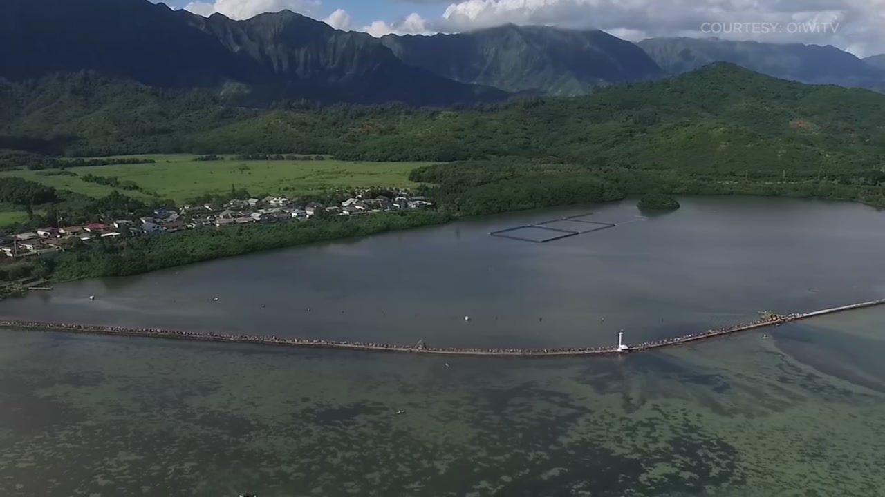 The 88-acre He'eia Fishpond was built approximately 600-800 years ago, but today, it's being shared with students, volunteers and visitors from around the world.