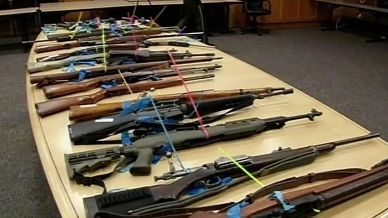 stolen rifles lined up