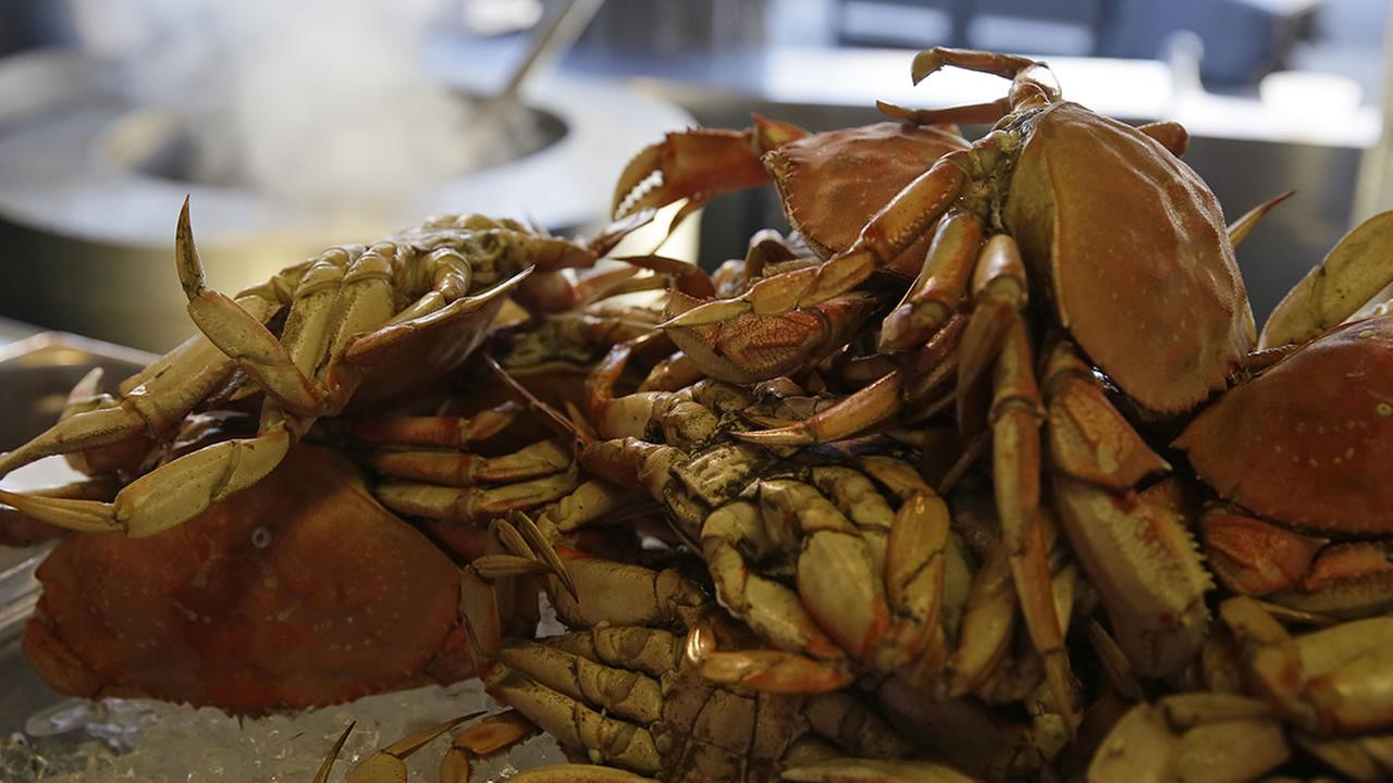 In this photo taken Tuesday, Nov. 10, 2015, imported Dungeness crabs from the Northwest are shown for sale at Fishermans Wharf in San Francisco. (AP Photo/Eric Risberg)