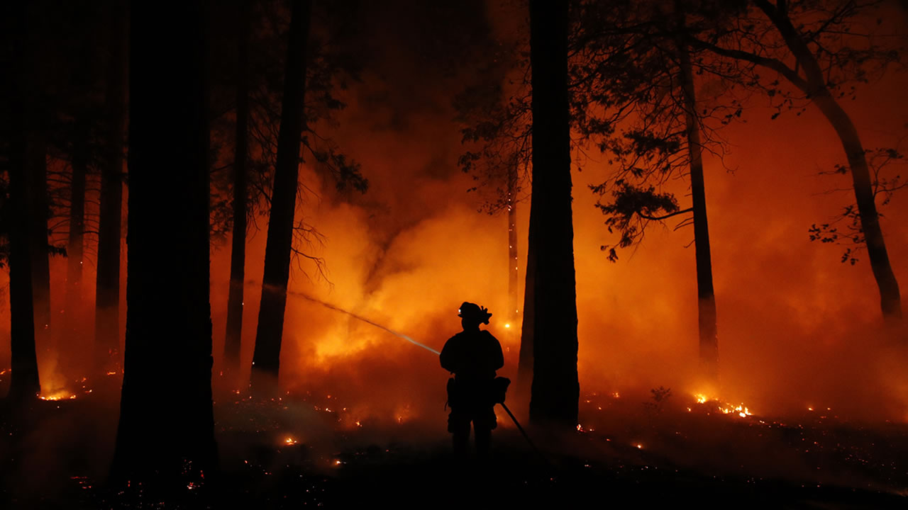 A firefighter sprays water on a controlled burn at a wildfire, Friday, Nov. 9, 2018, in Magalia, Calif.