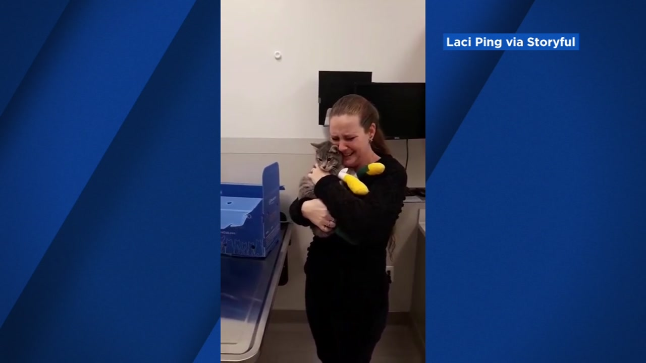 Camp Fire survivor has tearful reunion with missing cat