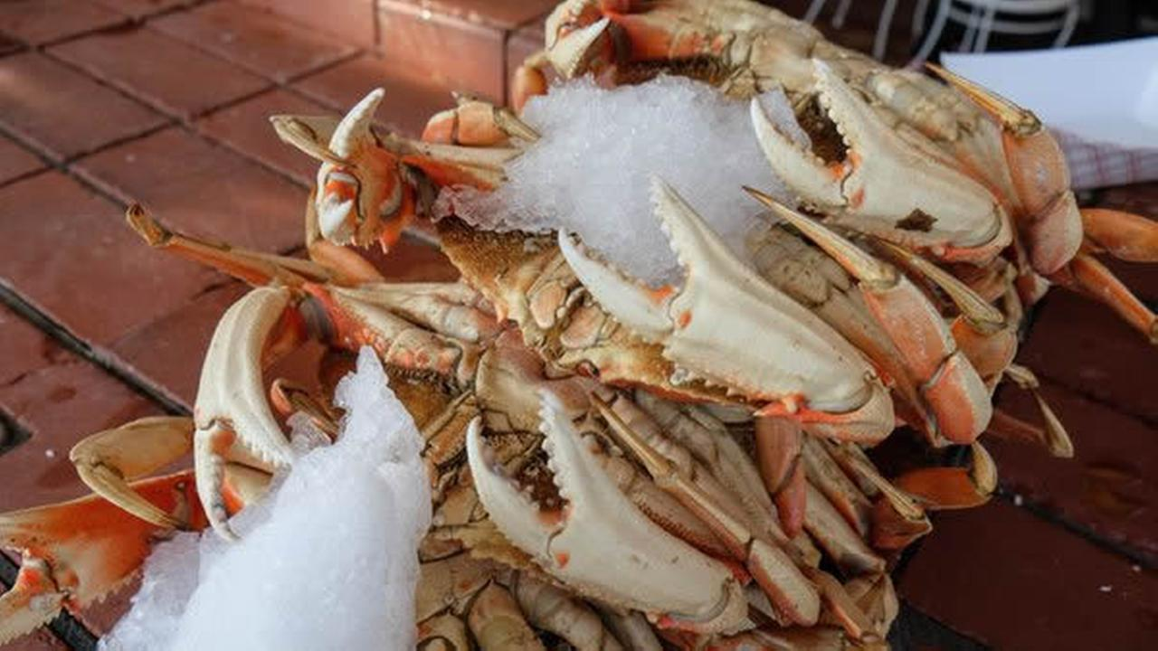 Crabs are seen at Fishermans Wharf in San Francisco, Calif. on Tuesday, February 9, 2016.