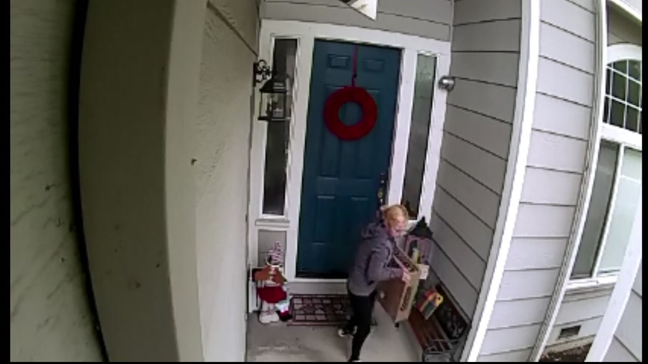This package thief was caught on camera in Concord.
