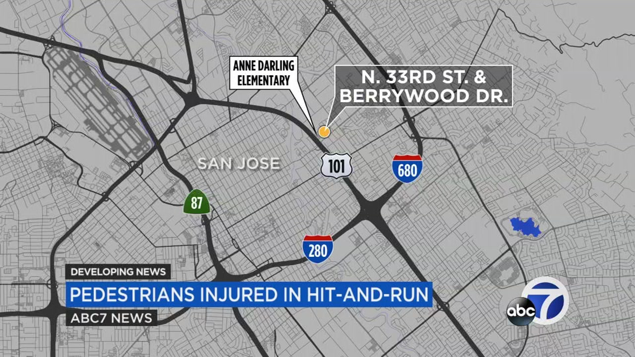 SJ hit and run