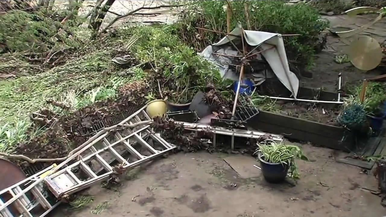 Strong winds from a storm knocked plants and ladders over in the backyard of a home in Santa Cruz, Calif. on Monday, March 7, 2016.