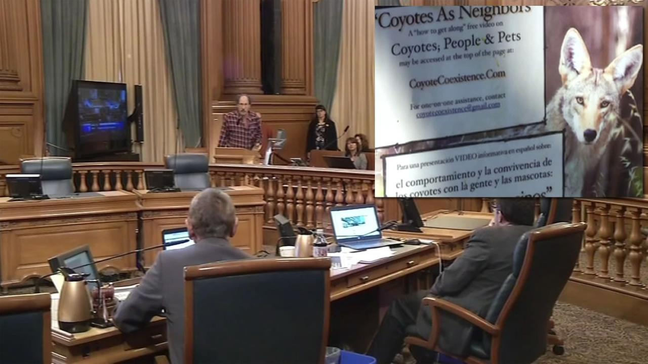 People gathered inside San Franciscos City Hall to address the growing issue of coyotes interacting with people and pets in the San Francisco March 24, 2016.