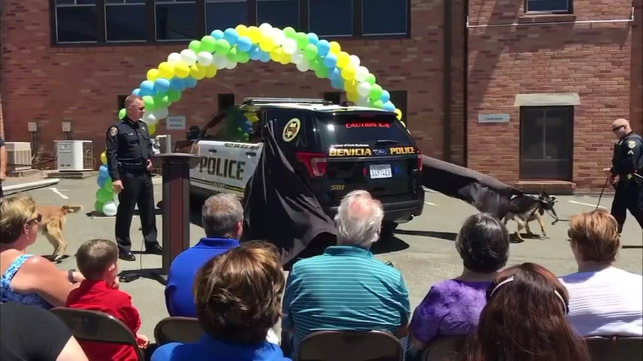Benicia police unveil tribute to young homicide victim