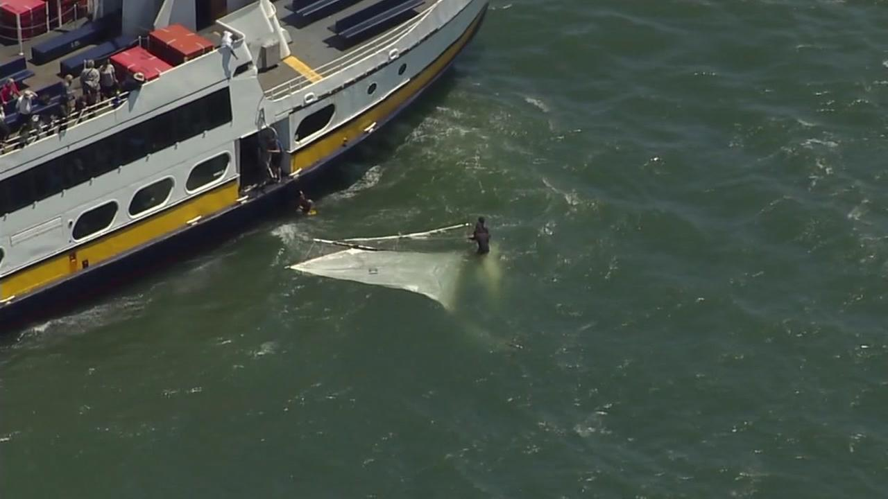 3 men rescued from San Francisco Bay after sailboat capsizes speak