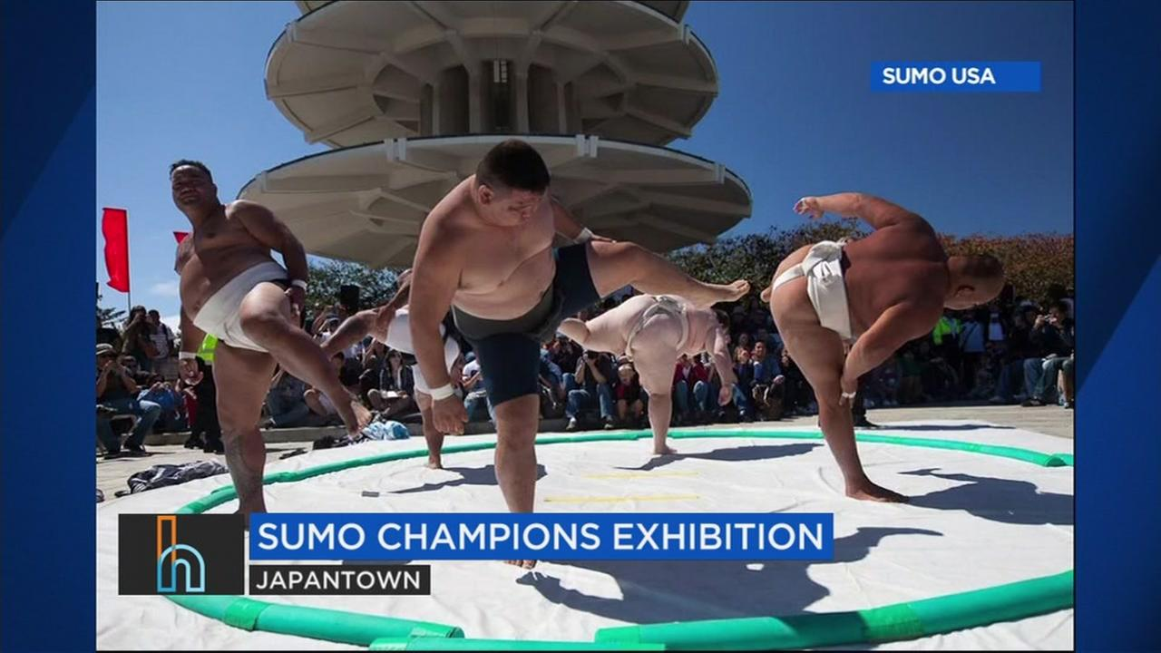 Sumo wrestlers are seen in this undated image.