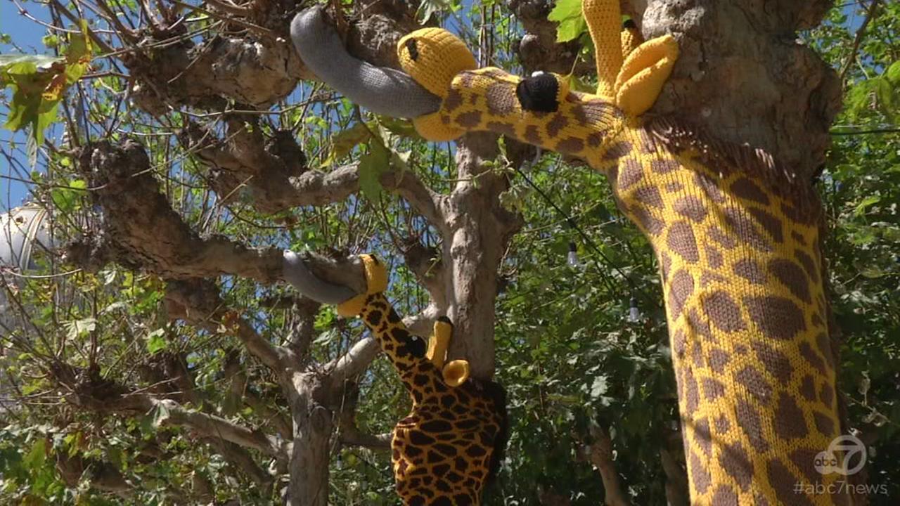 San Francisco Civic Center transformed into yarn zoo