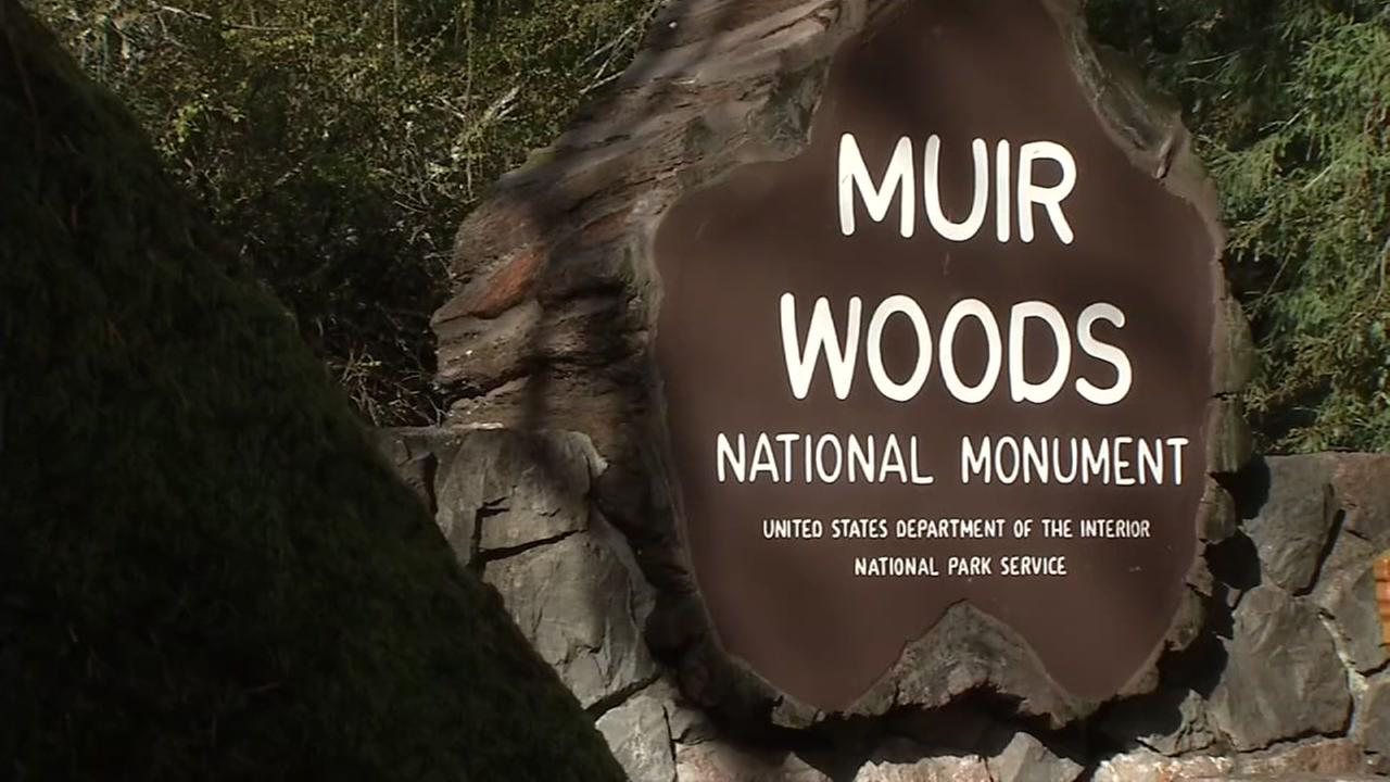 A sign for Muir Woods National Monument is seen in Mill Valley, Calif. in this undated image.