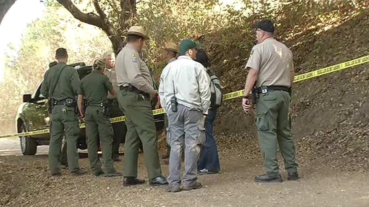 Rangers search for mountain lion after it attacked 6-year-old child