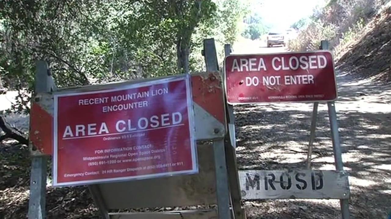 Mountain lion warning signs.
