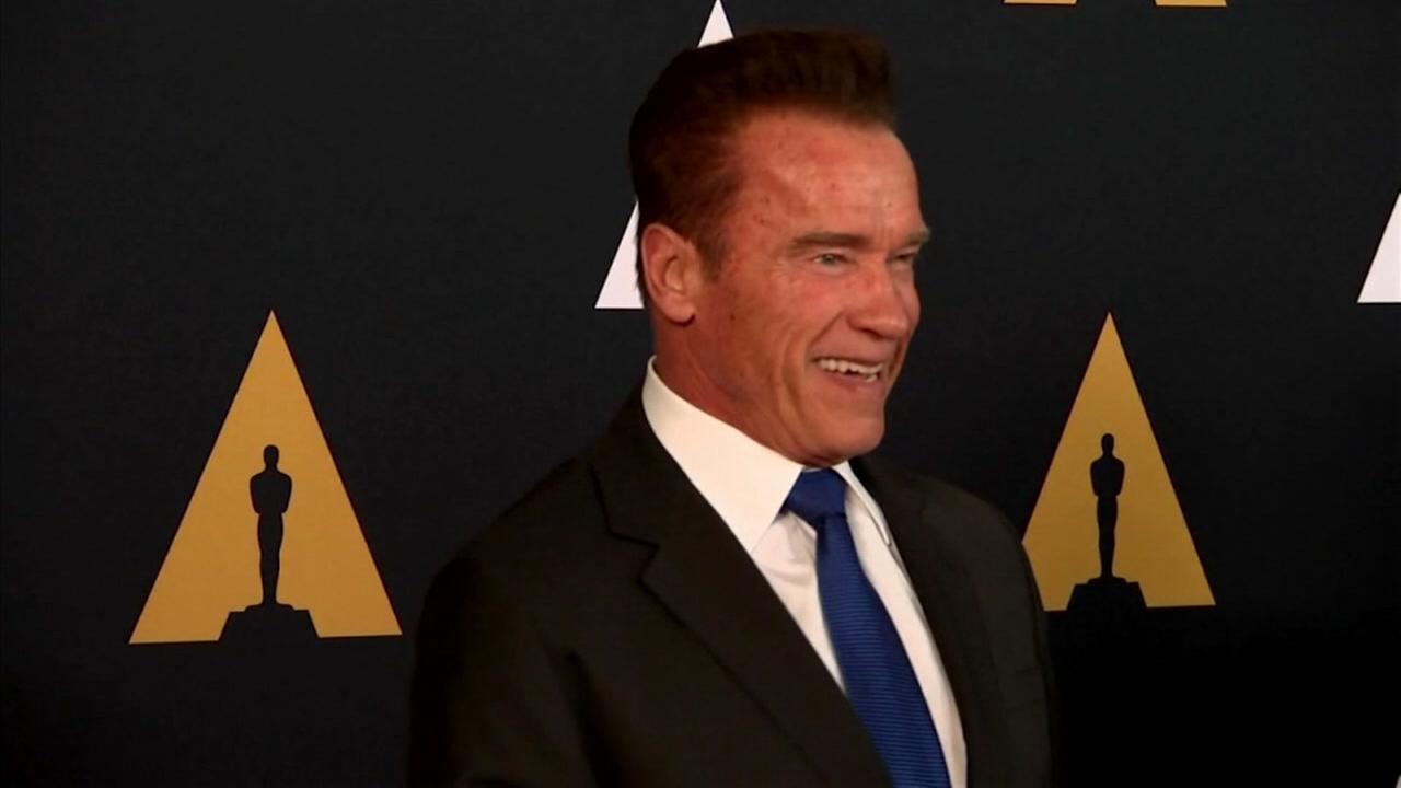 Arnold Schwarzenegger is seen in this undated image.