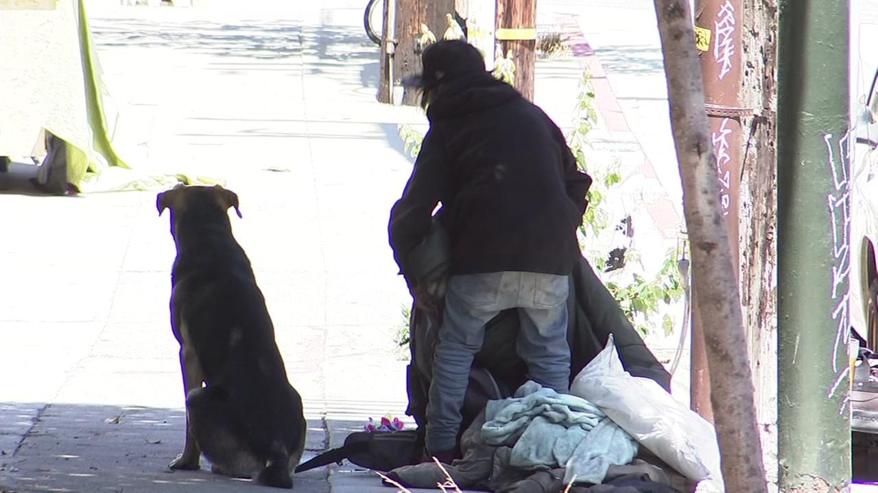 A homeless person is seen with a dog in San Francisco in this undated image.