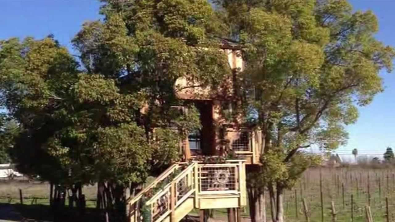 Planning officials in Placer County are asking a Northern California couple to downsize their deluxe treehouse.