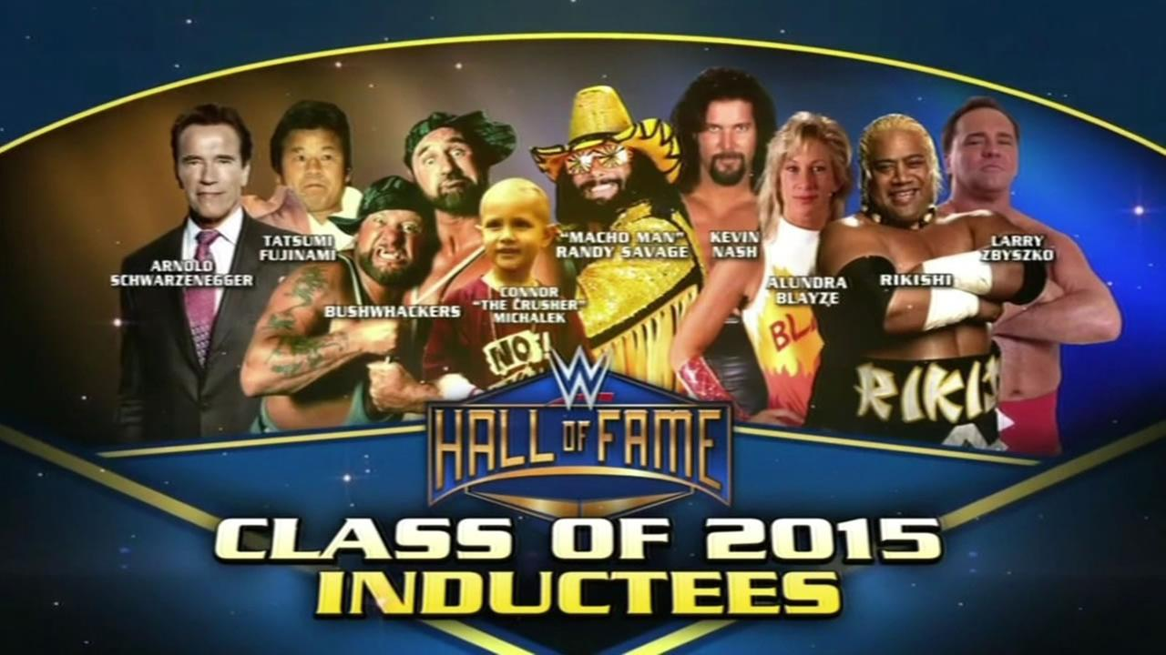 The WrestleMania Hall of Fame ceremony took place at the SAP Center in San Jose, Calif.  Saturday, March 28, 2015.