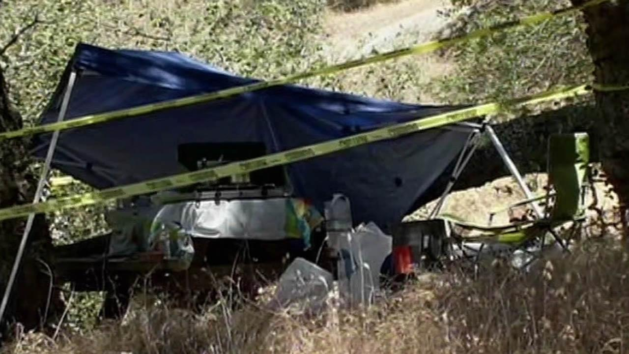 tree crashes on campground