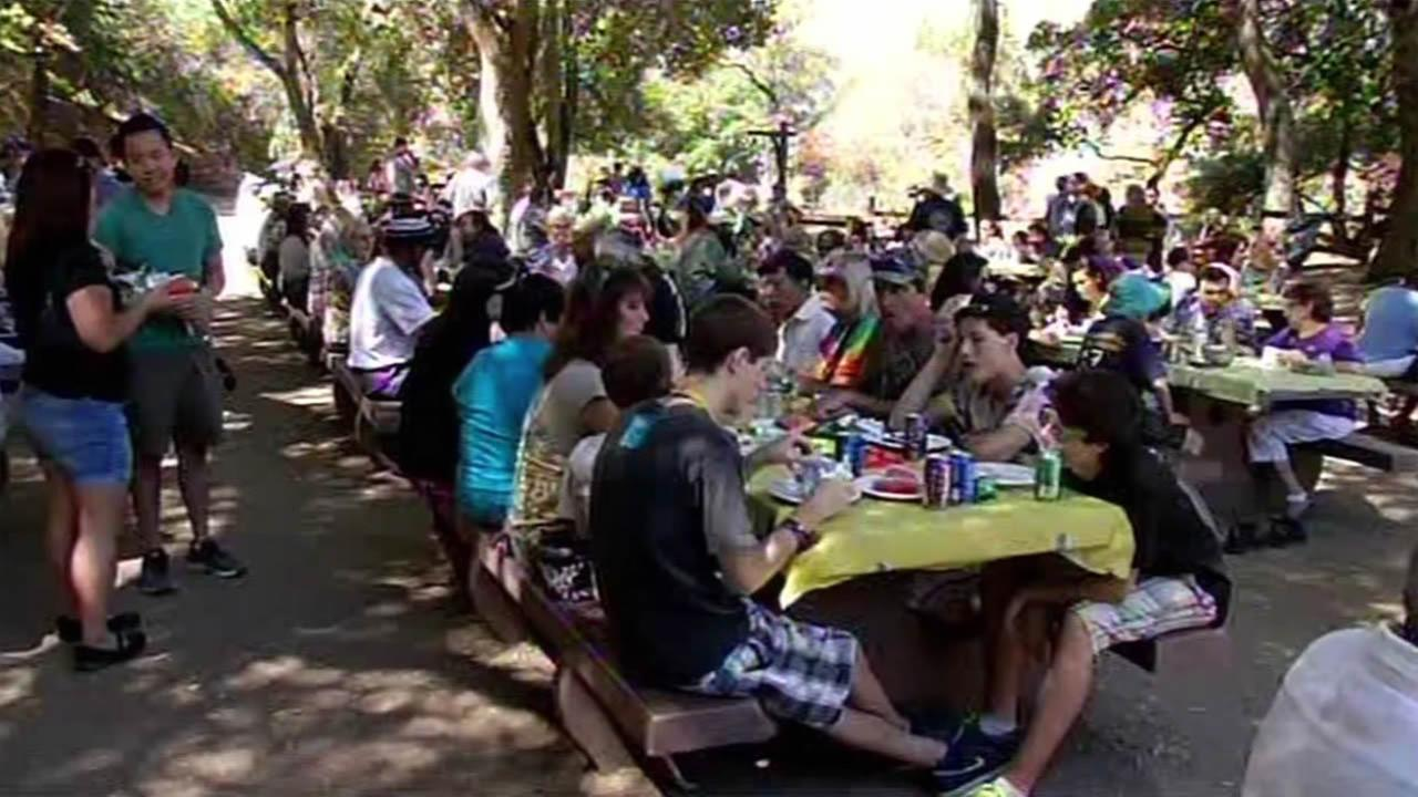 South Bay Labor Council members enjoy the annual Labor Day picnic in San Jose on Monday, September 7, 2015.