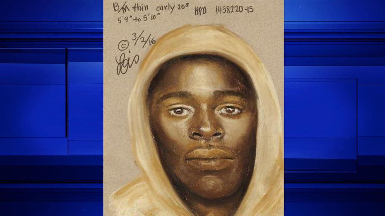 Officials release sketch of suspect in fatal Houston shooting