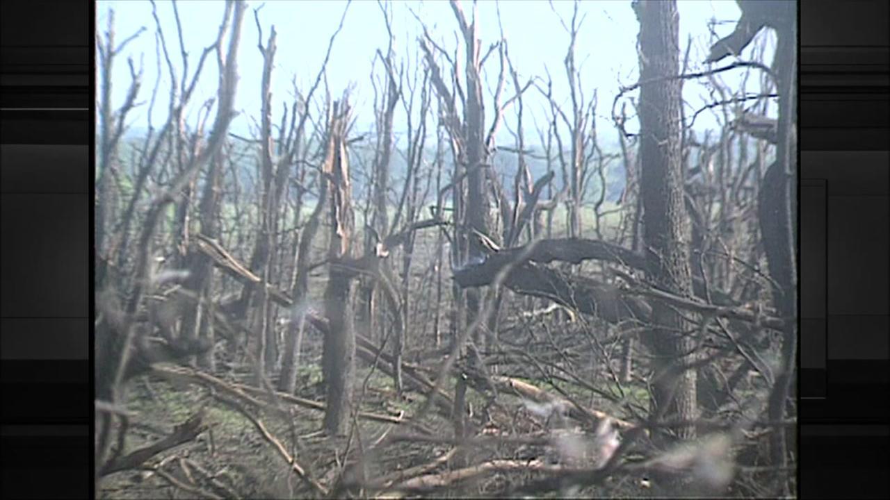 KTRK coverage of salt dome explosion near Brenham in 1992
