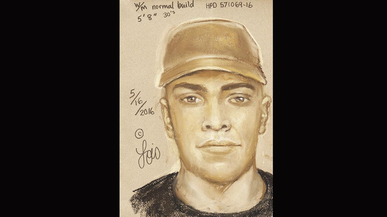 Houston Police Department suspect sketch