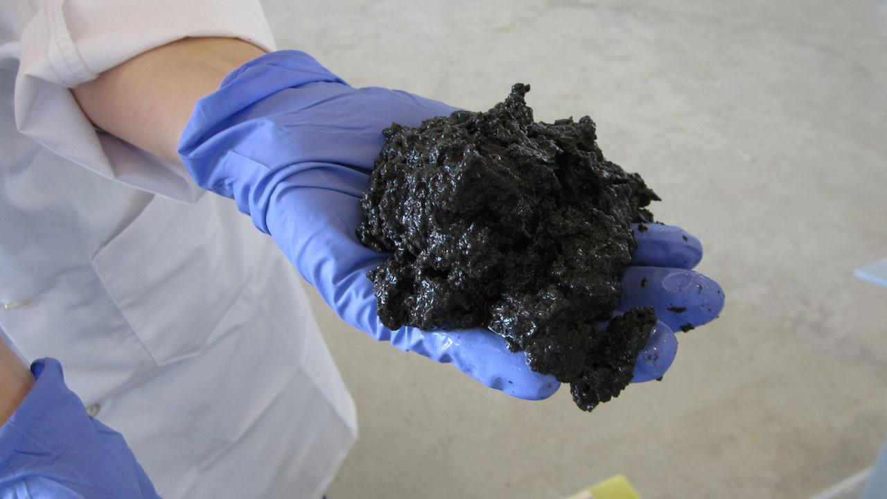 Department of Energy scientists created this petroleum-like sludge from human waste.