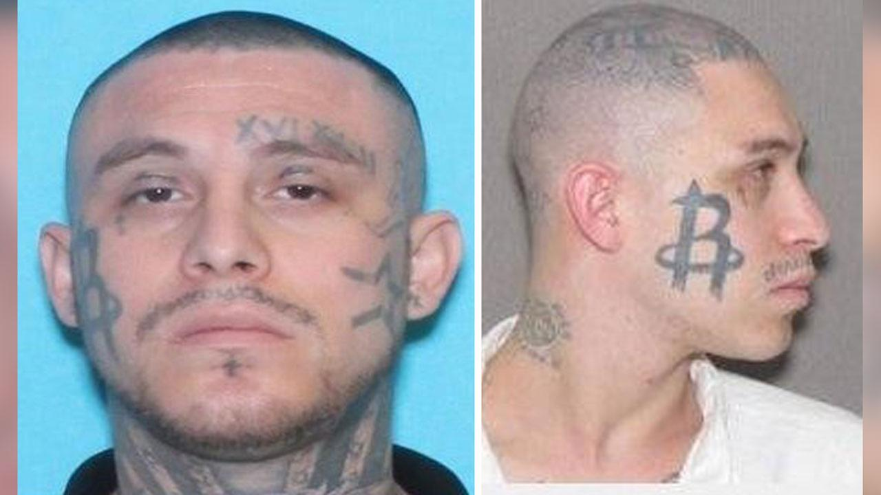 Crime Stoppers is looking for a fugitive with a Houston Rockets tattoo.