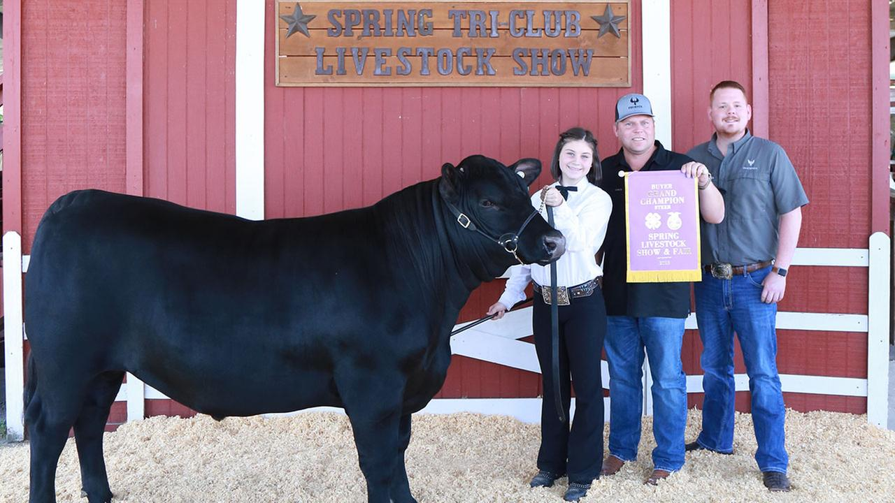 Kyla Viereck, Spring High School FFA student, poses with Bud, her Grand Champion Steer, along with representatives of Phoenix Insulation who were top bidders in the live auction.