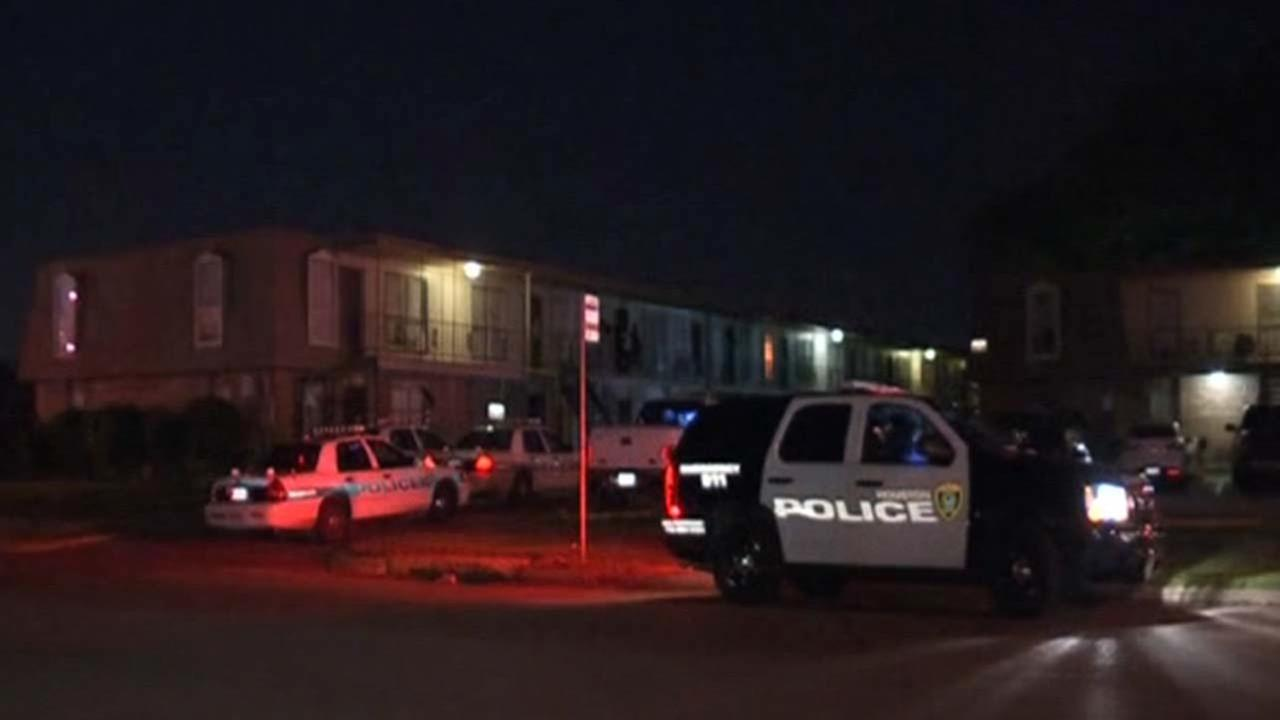 2 shot at southeast Houston apartment complex; gunman on run