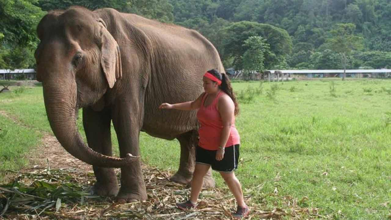 This summer, Lydia De Leon, 17, of Humble, spent two weeks in Thailand learning about Thai culture and volunteering with rescued elephants.