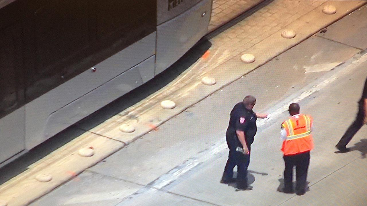 Pedestrian struck by METRO rail train in southeast Houston