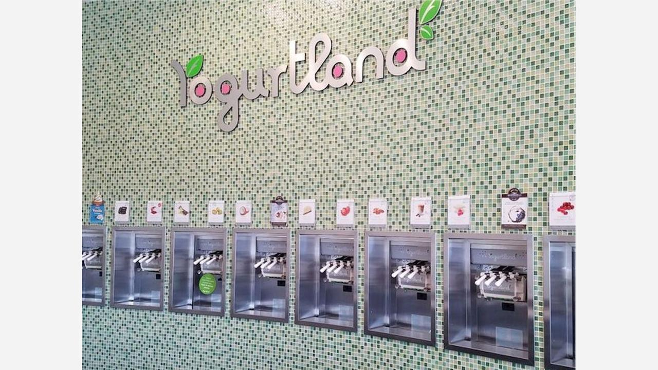 'Yogurtland' Brings Frozen Treats To Westchase