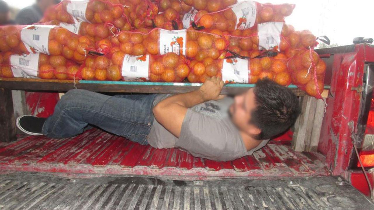 Border Patrol agents rescue 4 people hidden beneath 900 pounds of oranges