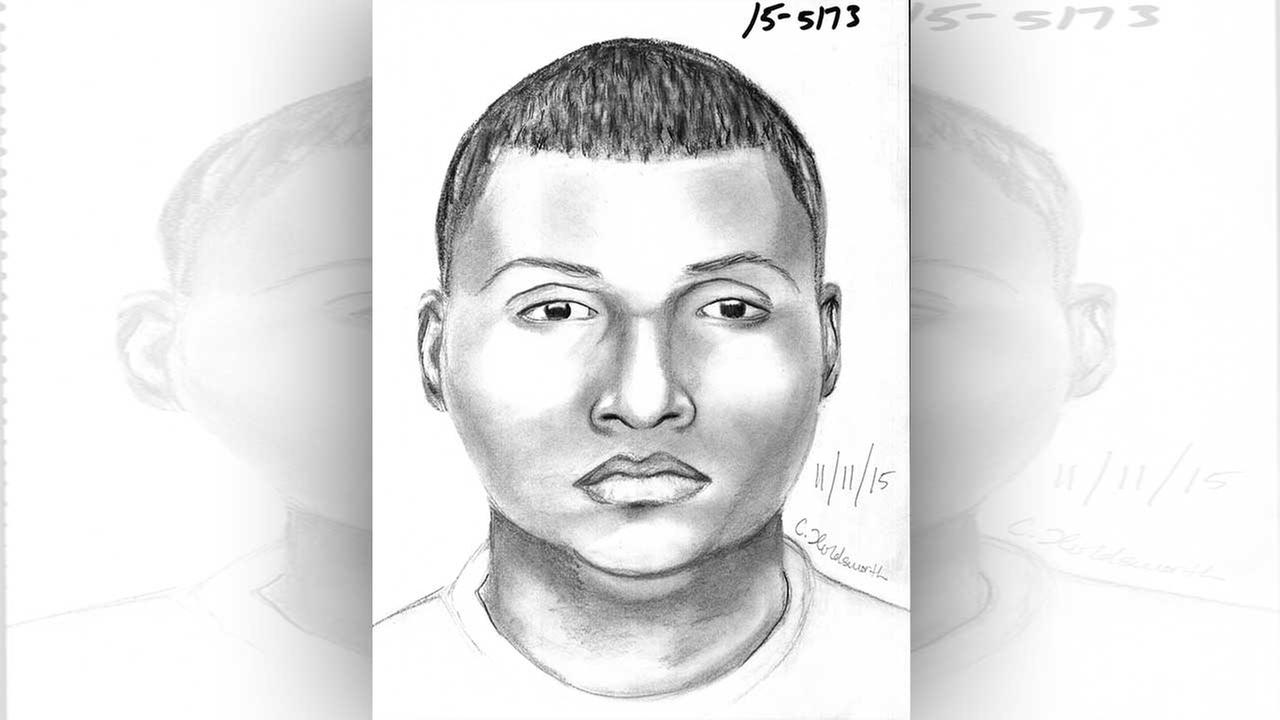 This sketch released by Sugar Land police shows one of the two suspects.