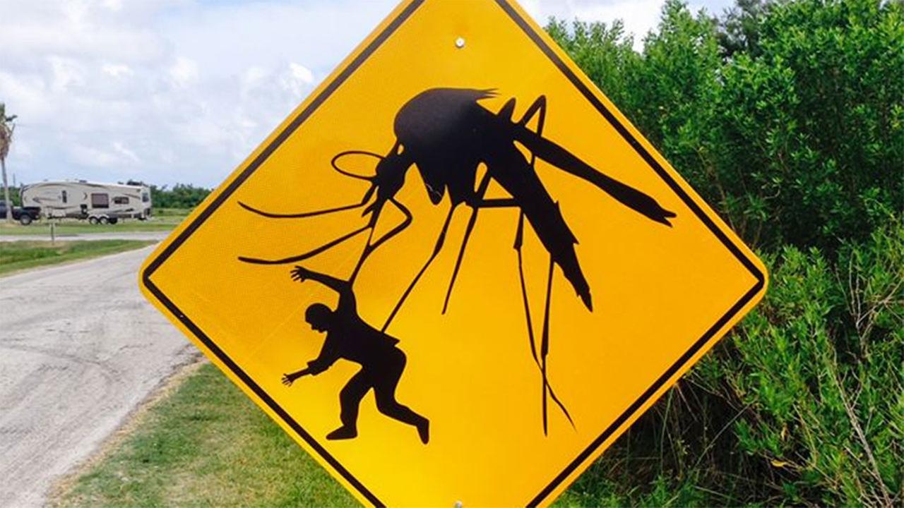 Sign with massive mosquito missing from Brazoria Co. park