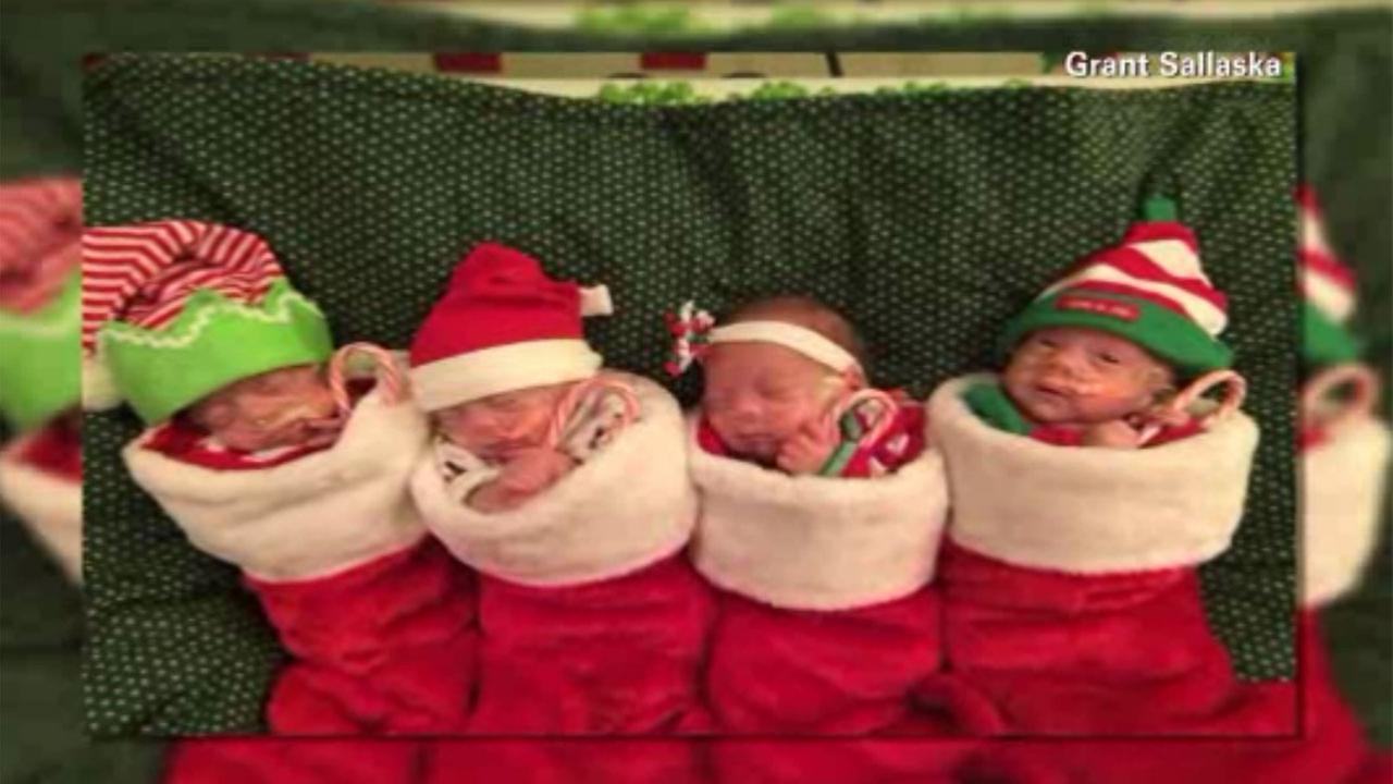 Newborn quadruplets christmas photo melting hearts