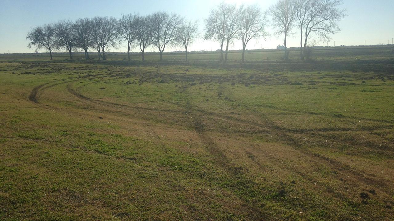 Tire marks damage VFW post's yard in Wharton County