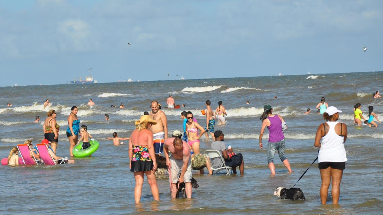 Galveston swimmers