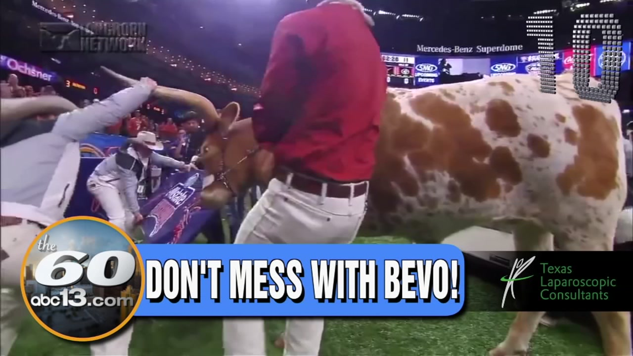 THE 60: Bevo charges at Georgia mascot a day after friendly tweet. Houston councilman buys Frenchys for customers.