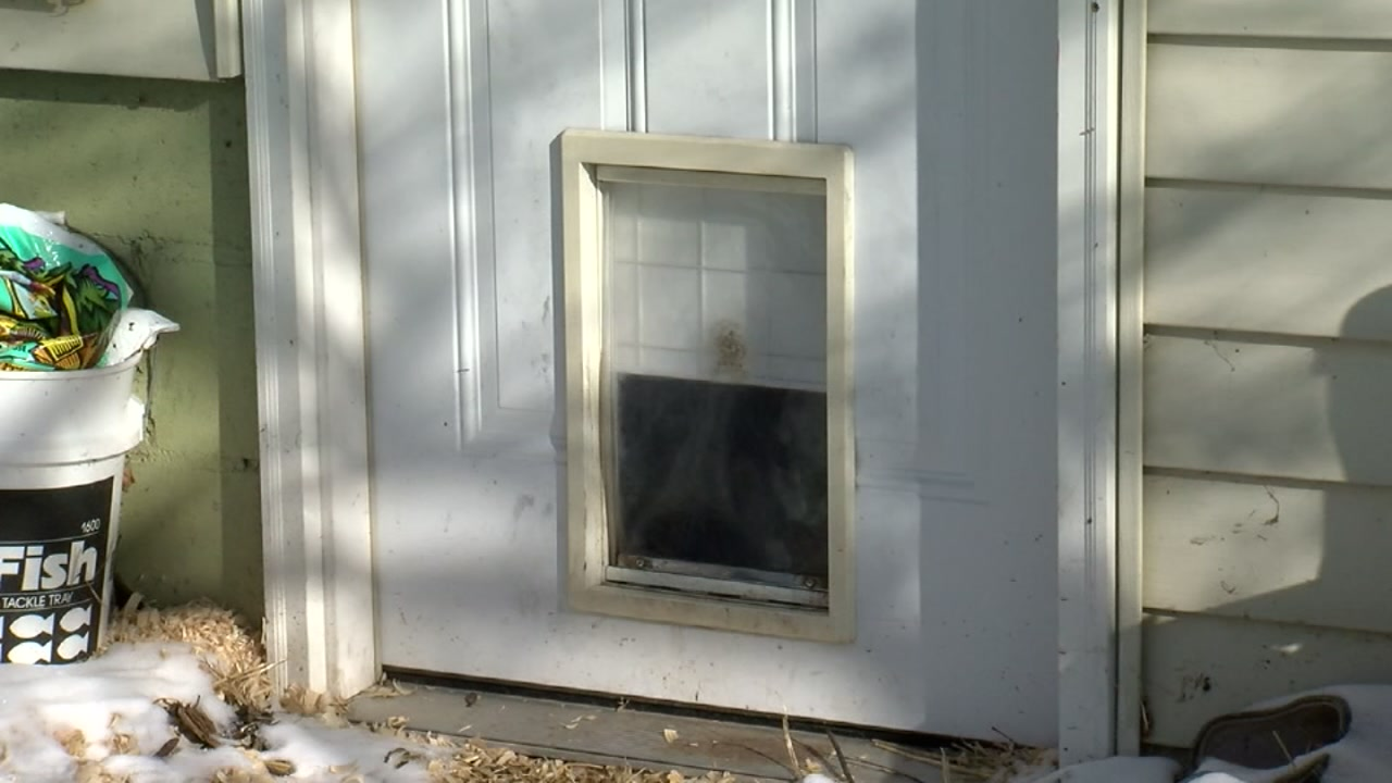 A man fends off an intruder who came in through a doggy door.