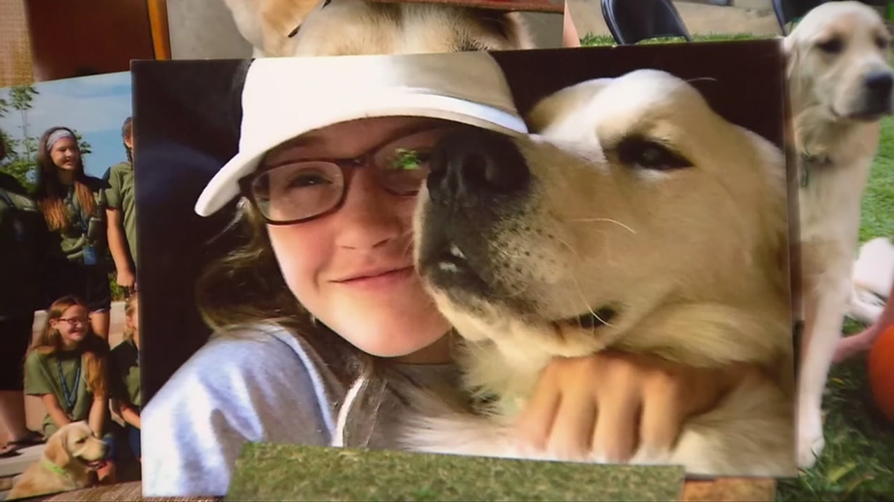 Hannah Westmoreland and her family are mourning the loss of Journey, her service dog, while also searching for the dogs killer.